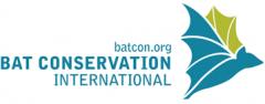 BCI-logo-big.png